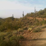 Photo taken at Sonoran Preserve - Sonoran Loop Trail by Loren C. on 3/19/2011