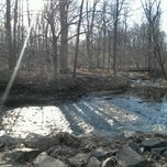 Photo taken at Lorimer Park by Chris Z. on 3/23/2013