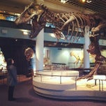 Photo taken at The Academy of Natural Sciences of Drexel University by Dan on 1/2/2013