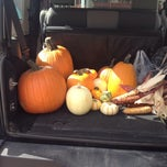 Photo taken at Klingers Farm Market by Katie N. on 10/12/2013