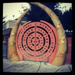 Photo taken at Downtown College Prep by Gipsy B. on 10/31/2012