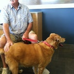 Photo taken at Banning Veterinary Hospital by Barbara B. on 10/3/2012