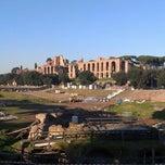 Photo taken at Circo Massimo by GaramT on 12/31/2012