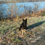 Photo taken at Scioto River by Elle B. on 11/28/2012