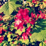 Photo taken at Bus Stop 52845 (136) by Gaby E. on 4/22/2013