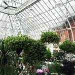 Photo taken at Westmount Greenhouse by James C. on 3/8/2015