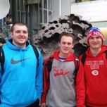 Photo taken at World's Largest Dinosaurs Exhibit at the American Museum of Natural History by Chad M. on 3/14/2015