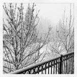 Photo taken at The Innsbruck Aspen by Sean M. on 3/27/2014