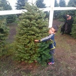 Photo taken at ABC Tree Farms by Brydon on 12/3/2012