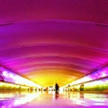 Photo taken at Detroit Metropolitan Wayne County Airport (DTW) by Brian N. on 9/19/2013