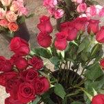 Photo taken at Saville Flowers by David E. on 2/14/2014