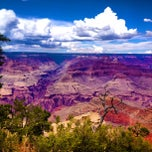 Photo taken at Grand Canyon National Park by Olga P. on 7/24/2013