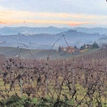 Photo taken at Vigna Dolcetto-Garitta by Gianluca M. on 1/16/2013