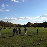 Photo taken at Prospect Park (Long Meadow) by Jason H. on 10/21/2012
