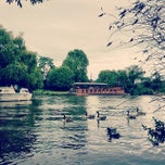 Photo taken at Hurst Park by Robert D. on 6/15/2014