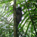 Photo taken at Parque Alfredo Volpi by Ezequiel W. on 10/21/2012