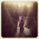 Photo taken at Alma's Garden Center by Patrick D. on 12/12/2013