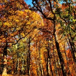 Photo taken at Greensfelder County Park by Fletch on 10/22/2012