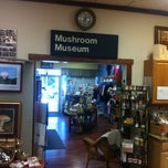 Photo taken at The Mushroom Cap by Justin G. on 5/26/2013