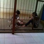 Photo taken at BOYSAN Grooming and Care Centre Perumahan Candi Gebang blok A-2 by Dina C. on 8/4/2013