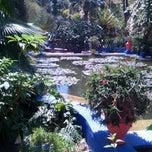 Photo taken at Jardin de Majorelle   حديقة ماجوريل by Eva N. on 3/30/2013