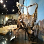 Photo taken at Royal Tyrrell Museum of Paleontology by Olivier V. on 6/21/2013
