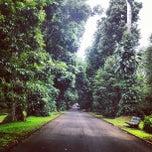 Photo taken at Kebun Raya Bogor by Pinot on 12/6/2012