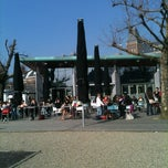Photo taken at Cobra Café by Lex v. on 3/21/2012