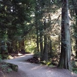 Photo taken at Lake Padden Park by Andrea H. on 7/2/2013