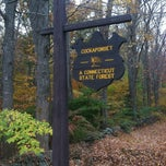 Photo taken at Cockaponset State Forest by Colin T. on 10/23/2013