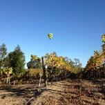 Photo taken at Saralee Vineyards by Allen G. on 10/10/2013