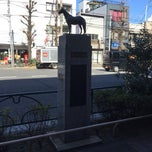 Photo taken at 目黒競馬場跡 by とめ on 2/1/2015