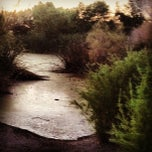 Photo taken at Wetlands Park by Terry 🙏 G. on 6/7/2013
