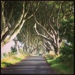 Photo taken at The Dark Hedges by Holly R. on 9/16/2013