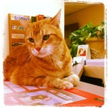 Photo taken at River Trails Animal Hospital by Magda W. on 5/2/2013