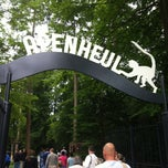 Photo taken at Apenheul by Robin H. on 7/14/2013