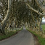 Photo taken at The Dark Hedges by Rachel B. on 2/2/2013