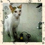 Photo taken at Hall Lantai 1 FKH UNAIR by Sabrina M. on 3/24/2013