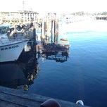 Photo taken at Sea Lion Observatory Deck by Cara K. on 4/3/2014
