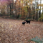 Photo taken at Forest Adventures by Captain P. on 11/17/2012