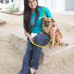 Photo taken at The Animal Foundation (Lied Animal Shelter) by The Animal Foundation (Lied Animal Shelter) on 12/19/2013