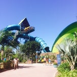 Photo taken at Aquatica San Diego by Louie L. on 9/21/2014