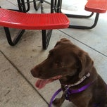 Photo taken at Five Guys by Tiffany P. on 8/31/2014