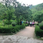 Photo taken at 허브나라 농원 / Herbnara Farm by Kim S. on 6/30/2013