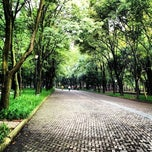 Photo taken at Parque 3a Sección De Chapultepec by Darwin B. on 7/25/2013
