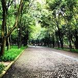 Photo taken at 3ª Sección del Bosque de Chapultepec by Darwin B. on 7/25/2013