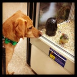 Photo taken at PetSmart by M P. on 9/15/2013