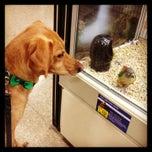 Photo taken at PetSmart by M P. on 9/15/2013