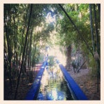 Photo taken at Jardin de Majorelle by Tulio P. on 12/29/2012