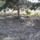Photo taken at Columbia Dog Park by Alan on 9/30/2012
